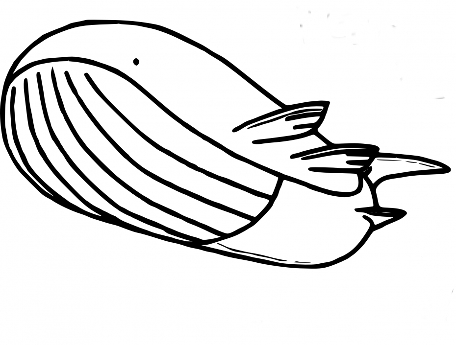 Coloriage Wailord Pokemon